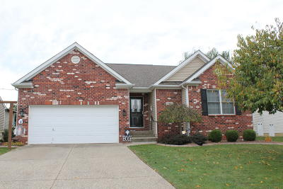 Louisville Single Family Home For Sale: 6508 Calm River Way