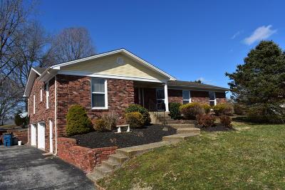 Shepherdsville Single Family Home For Sale: 238 Salt River Dr