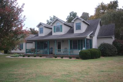 Grayson County Single Family Home For Sale: 7159 Elizabethtown Rd