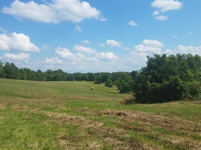 Taylorsville Residential Lots & Land For Sale: 1748 Townhill Rd