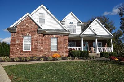Simpsonville Single Family Home For Sale: 310 Birdie Ct