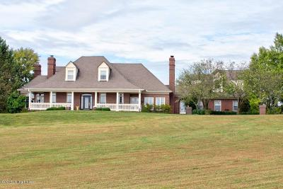 Simpsonville Single Family Home For Sale: 329 Old Stone Dr