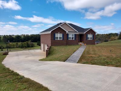Nelson County Single Family Home For Sale: 127 Lookout Ct