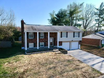 Louisville KY Single Family Home For Sale: $225,000