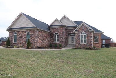 Single Family Home For Sale: 932 Willow Pointe Dr