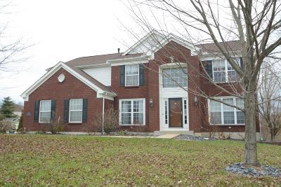 Single Family Home For Sale: 3800 Brogan Ct