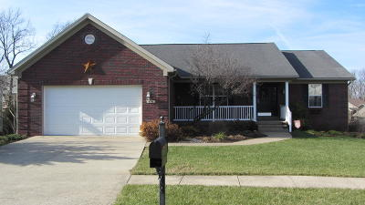Simpsonville Single Family Home For Sale: 178 Lincoln Station Dr