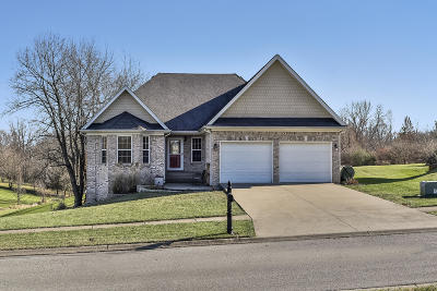 Shelbyville Single Family Home For Sale: 79 Brassfield Blvd