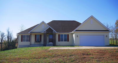 Meade County Single Family Home For Sale: 1303 Shot Hunt Rd