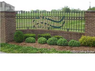 Henry County Residential Lots & Land For Sale: 52 Jericho Ridge Ct