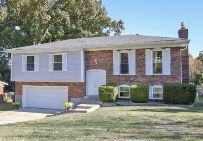 Oldham County Single Family Home For Sale: 1107 Crestview Way