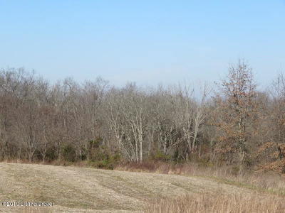 Henry County Residential Lots & Land For Sale: 2 Chiltons Ln