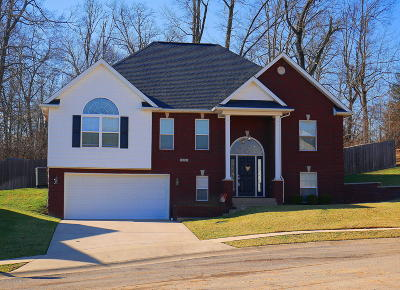 Hardin County Single Family Home For Sale: 508 Richmond Ct
