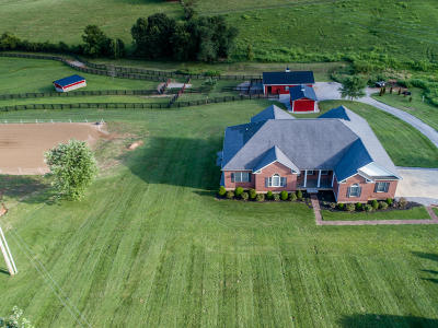 Stamping Ground KY Single Family Home For Sale: $525,000