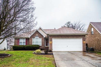 Louisville Single Family Home For Sale: 9414 Megan Jay Ct