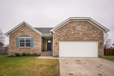 Single Family Home For Sale: 438 Bald Eagles Cir