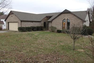 Elizabethtown Single Family Home For Sale: 111 N Pointe Dr