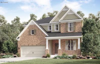 Single Family Home For Sale: 16209 Rockcrest View Ln