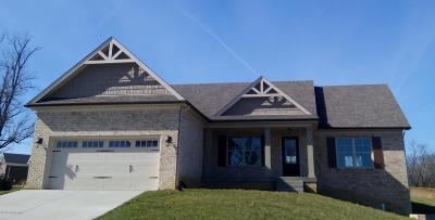 Taylorsville Single Family Home For Sale: 70 Wills Way