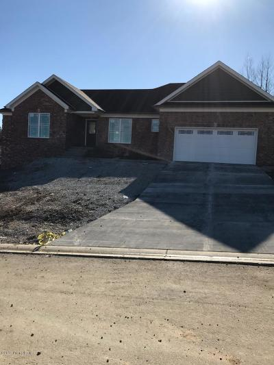 Taylorsville Single Family Home For Sale: Lot 46 Eaglesnest