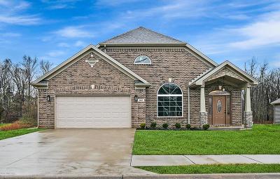 Hardin County Single Family Home For Sale: 122 Shirley Blvd