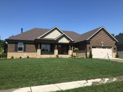 Single Family Home For Sale: 10310 Valley Farms Blvd