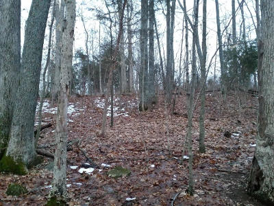 Mt Washington Residential Lots & Land Active Under Contract: Lot 41 Oak Dr