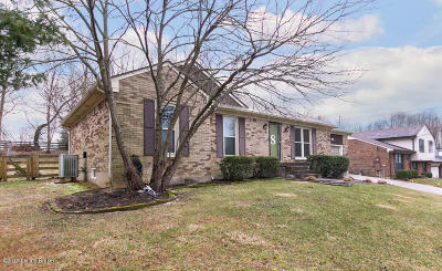 Oldham County Single Family Home For Sale: 12008 Springmeadow Ln
