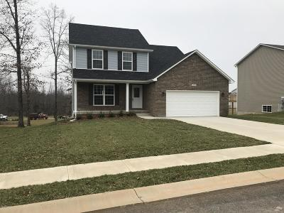 Single Family Home For Sale: 213 Emerson Dr