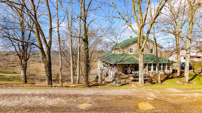 Carroll County Single Family Home For Sale: 1996 Bucks Run Rd