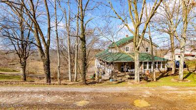 Single Family Home For Sale: 1996 Bucks Run Rd
