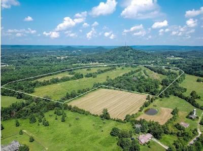 Shepherdsville Residential Lots & Land For Sale: Tract 2 Old Boston Rd