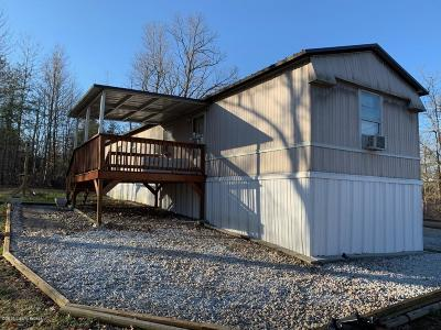 Mammoth Cave Single Family Home For Sale: 422 Wilderness Rd