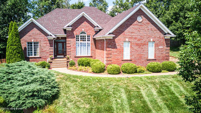 Single Family Home For Sale: 15810 Waterstone Ct