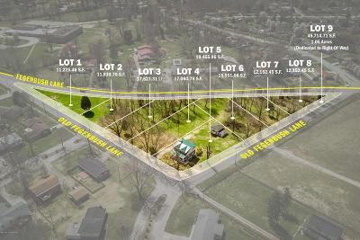 Louisville Residential Lots & Land For Sale: 6908 Old Fegenbush Ln