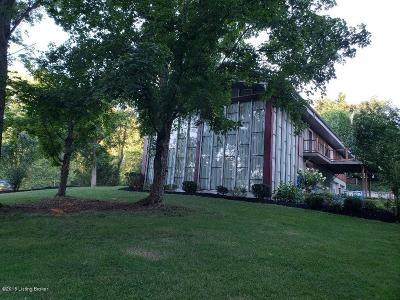 Carroll County Single Family Home For Sale: 1379 Martin Rd