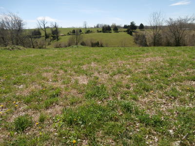 Shelbyville Residential Lots & Land For Sale: 3207 Rockbridge Rd