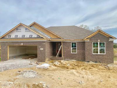Taylorsville Single Family Home For Sale: 245 Eaglenest