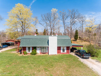 Brandenburg Single Family Home For Sale: 363 Wise Rd