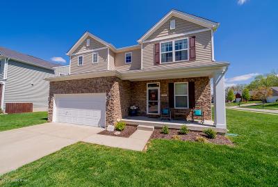 Louisville Single Family Home For Sale: 9125 Big Boulder Dr