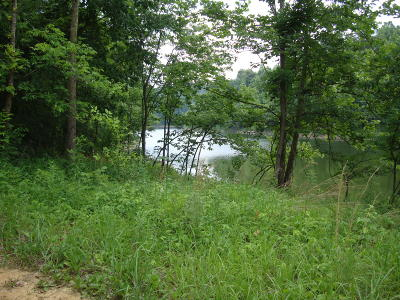 Leitchfield, Falls Of Rough, Axtel, Rough River, Mcdaniels, Madrid, Hudson, Westview, Cub Run, Mammoth Cave, Bee Springs, Wax, Clarkson Residential Lots & Land For Sale: 77 Gannaway Rd