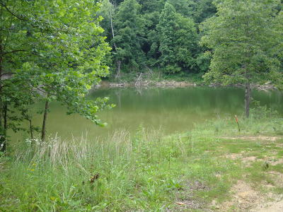 Leitchfield, Falls Of Rough, Axtel, Rough River, Mcdaniels, Madrid, Hudson, Westview, Cub Run, Mammoth Cave, Bee Springs, Wax, Clarkson Residential Lots & Land For Sale: 55 Gannaway Rd