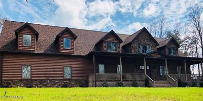 Single Family Home For Sale: 1520 State Park Rd