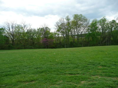 Taylorsville Residential Lots & Land For Sale: 9 Carrithers Ln