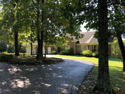 Single Family Home For Sale: 13889 Taylorsville Rd