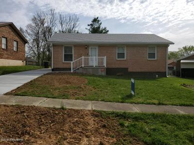 Elizabethtown Single Family Home For Sale: 86 W Airview Dr
