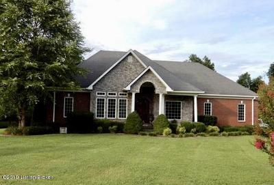 Single Family Home For Sale: 1080 Lyons Station Rd