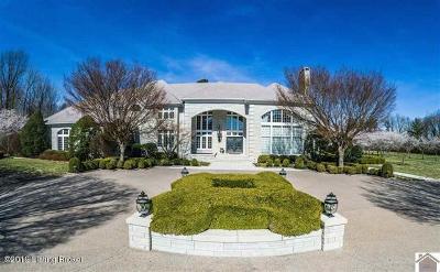 Single Family Home For Sale: 2255 Olivet Church Rd