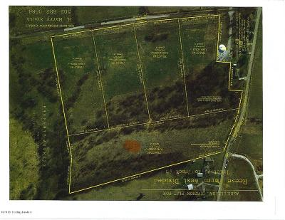 Simpsonville Residential Lots & Land For Sale: 393 Cooper Ln
