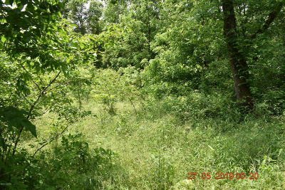 Spencer County Residential Lots & Land For Sale: Tract 2 Old Van Buren Rd